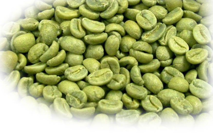 coffee bean malaysia Bahasa malaysia (malaysia) čeština (česká republika.